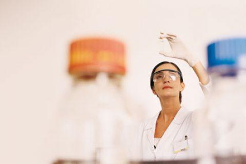 Merck reconocida por segundo año consecutivo como Top Employer